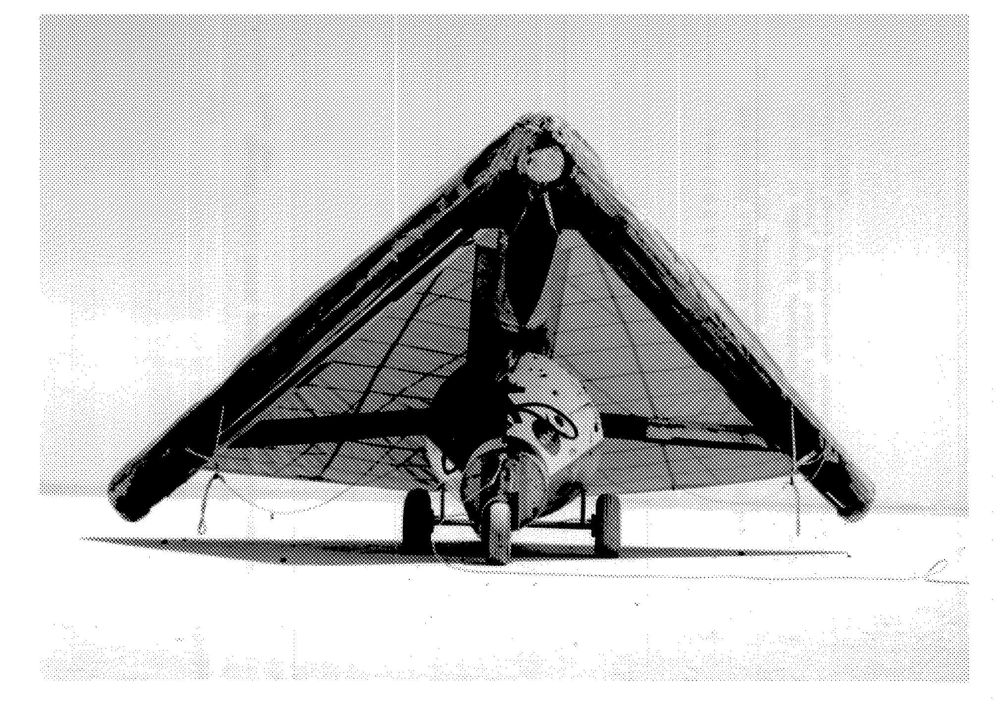rogallo-wing-model.jpg